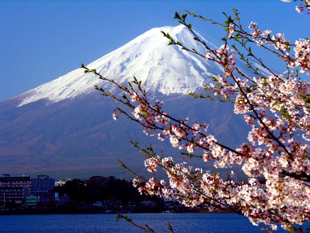 Хочу пожить  в Японии