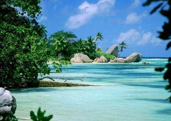 Хочу в Мадагаскар