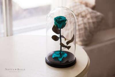 Неувядающая роза в колбе