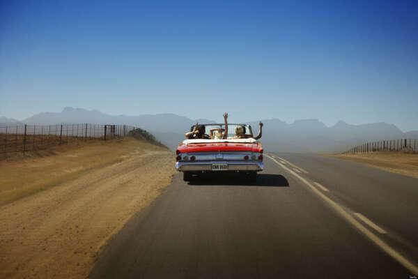 Ехать за рулем кабриолета в каньоне США и слушать рок
