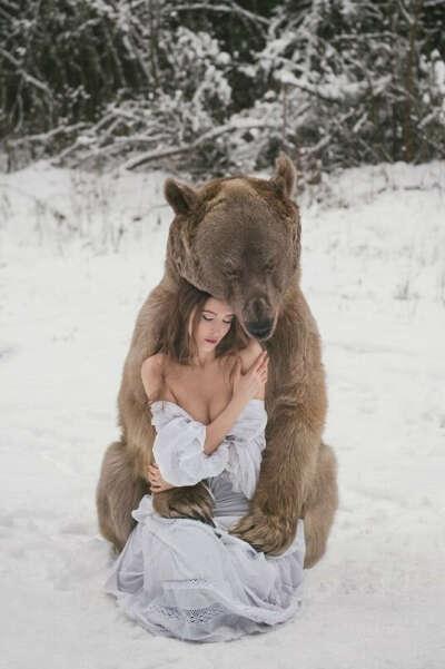 Обнять живого медведя