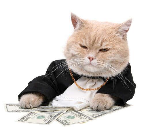 Научится правильно обращаться с деньгами