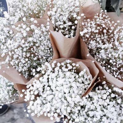 Букет цветов гипсофила метельчатая