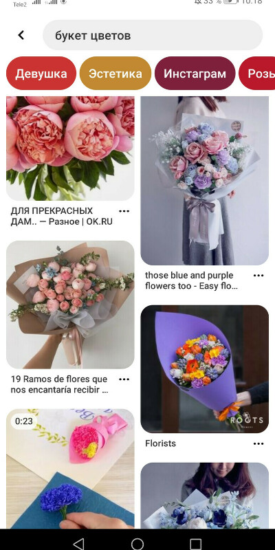 Цветы, много цветов, без повода.