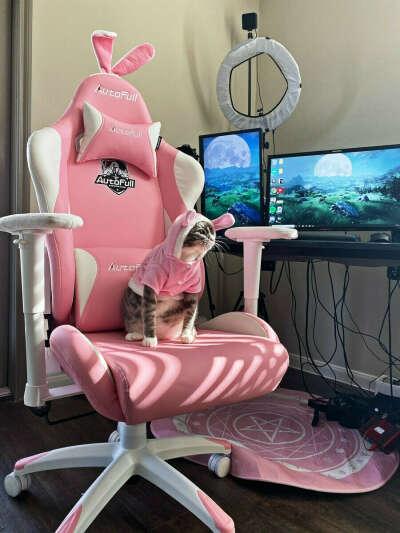 Компьютерное кресло AutoFull AF/055/WP Pink Bunny
