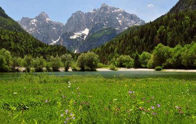 В Альпы