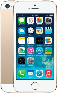 Смартфон Apple iPhone 5s 64GB (Gold) IW (International warranty)