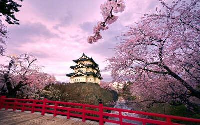 Поездка в Японию