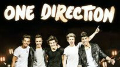 go to the One Direction concert