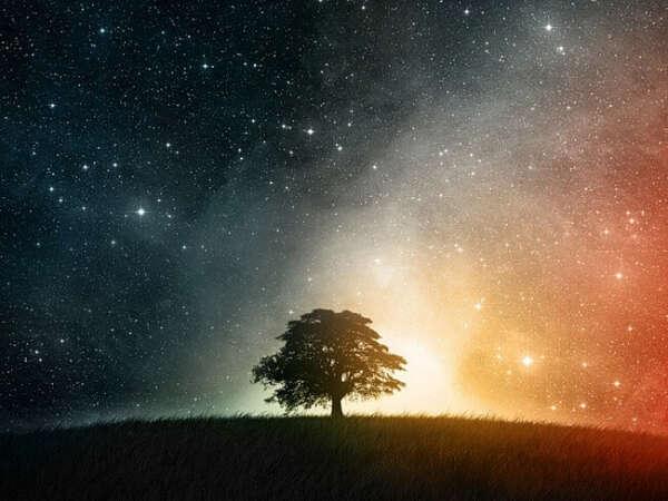 Заснуть под звёздами
