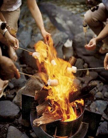 Пожарить зефирки с друзьями