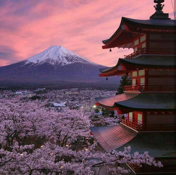 Посетить Японию