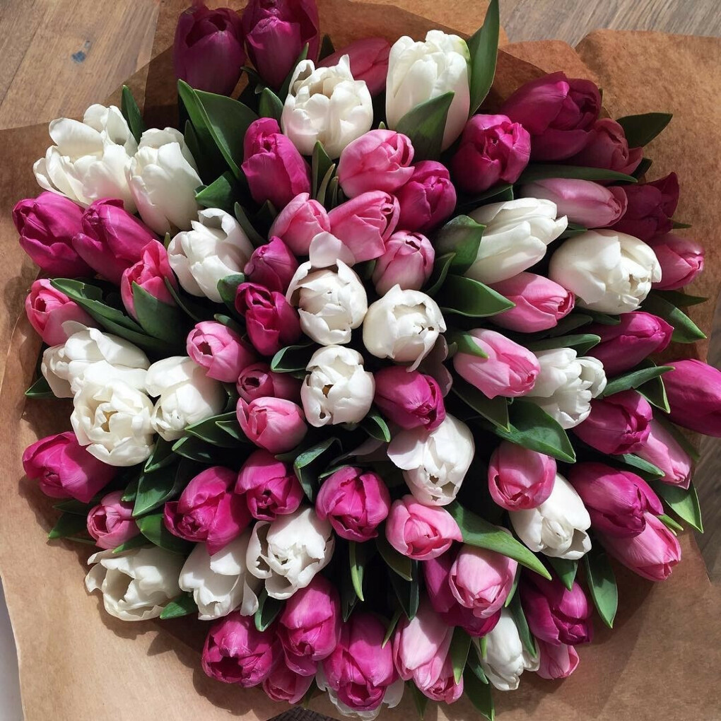 Много тюльпанов!