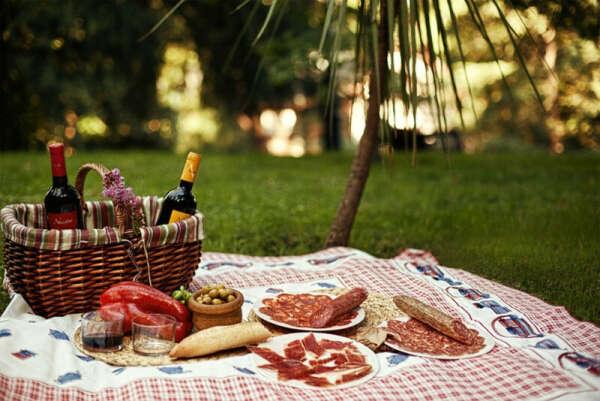 Хочу на пикник 🧇🍕🥪🥤🌄🌲🌲🌲