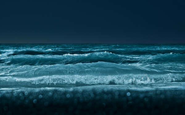 Поплавать в ночном океане