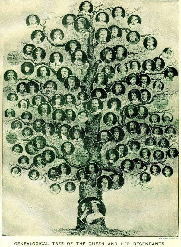 Составить генеалогическое древо