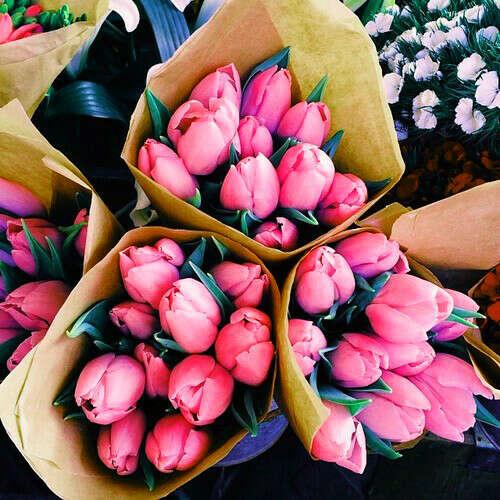 Букет тюльпанов посреди зимы