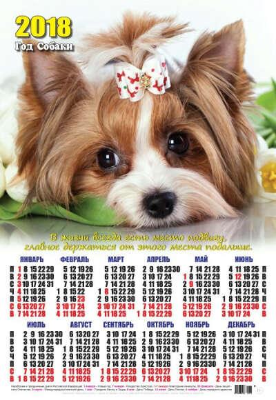 хочу календарь с собакой 2018 год