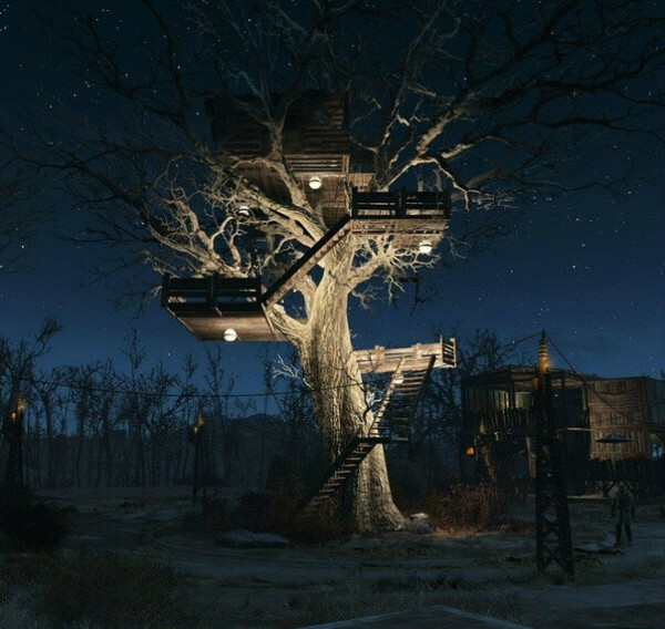 Построить дом на дереве.