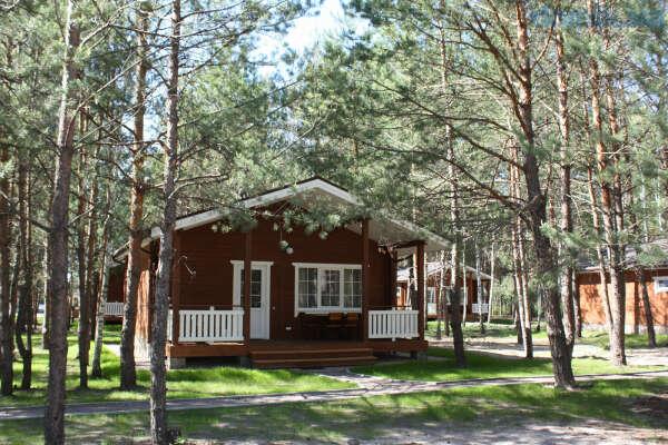 Провести выходные в домике в лесу