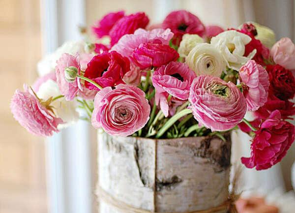 Чтобы дома всегда были цветы