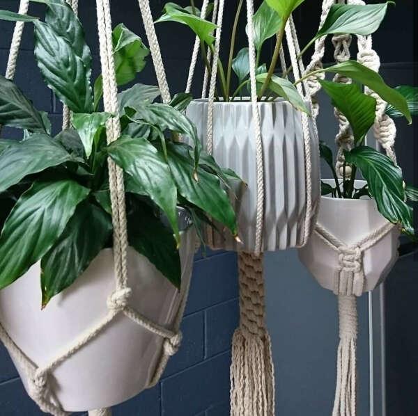 Подвес для растений
