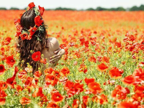Фото на цветущем маковом поле