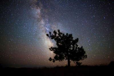 Уснуть под звездами