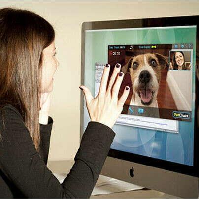 PetChatz видеофон для питомцев