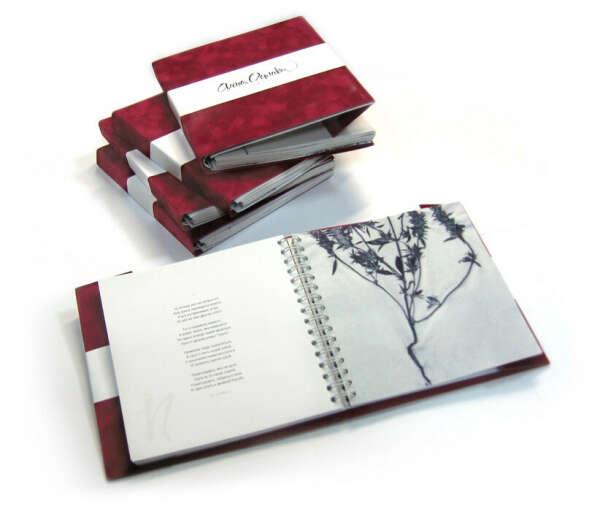 Издать собственный сборник стихов