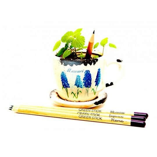 Карандаши растущие Green Stick, набор 3 шт.  / Травы