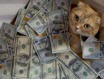 Деньги деньги дребеденьги