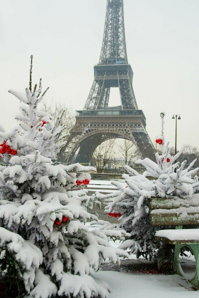 Я хочу встретить новый год в париже