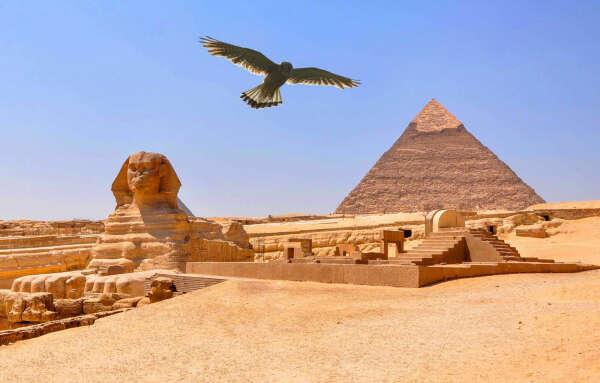 Полететь в Египет