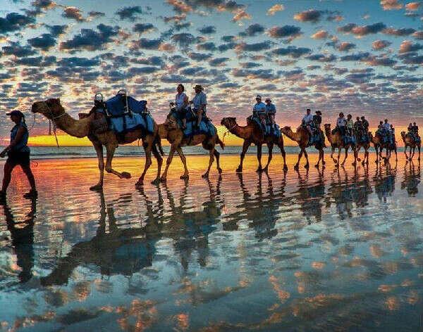 Проехаться на верблюде