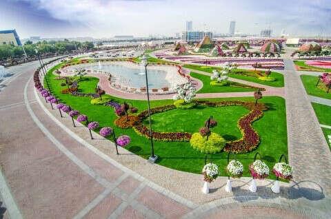 Посетить Dubai Miracle Garden