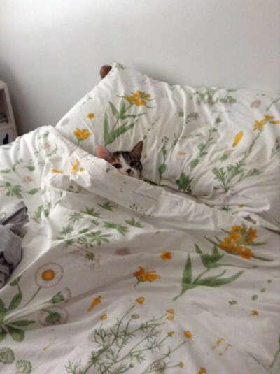 Красивое постельное белье.