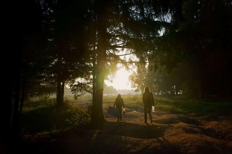 прогуляться по лесу