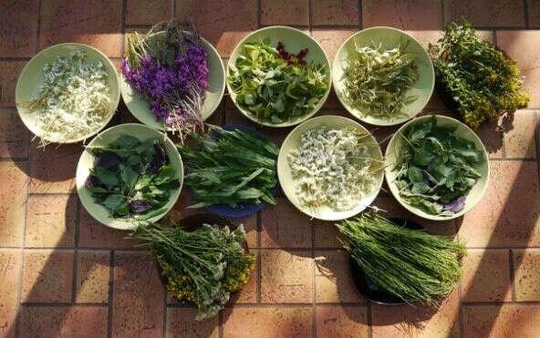 Травы для чая (в приоритете мята, чабрец, иван-чай)