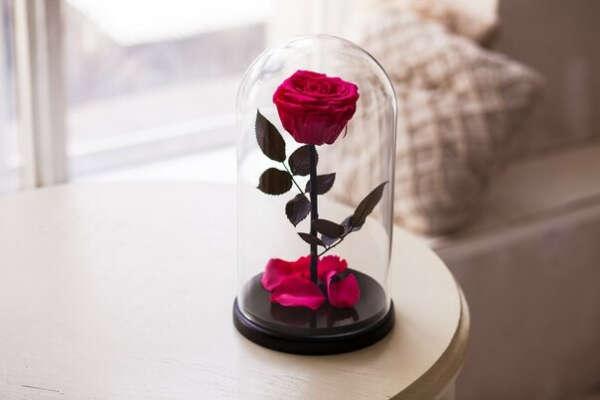 Notta & Belle - Роза в стеклянной колбе