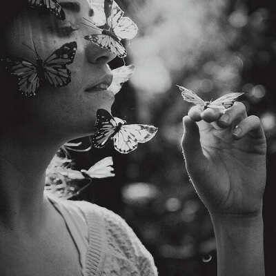 Посетить парк бабочек