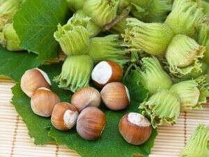 Собирать лесные орехи