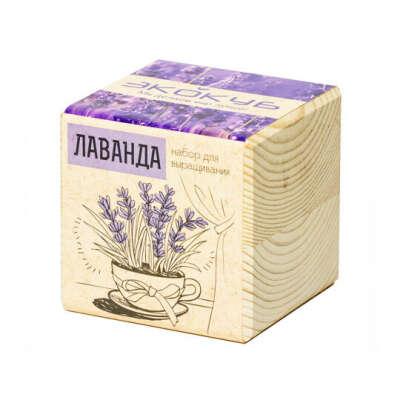 Набор для выращивания Ecocube  / Лаванда