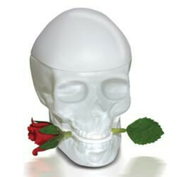 ED HARDY Skull&Roses Women