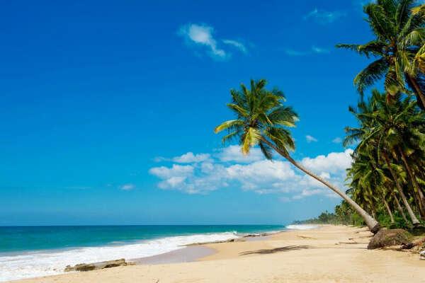 Тур на Шри-Ланка