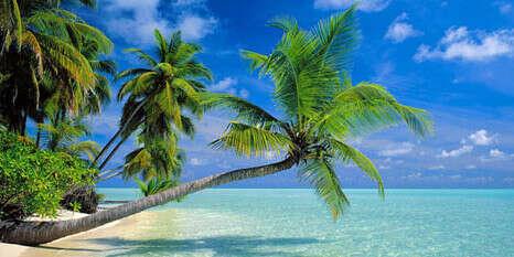 Подарить родителям поездку на Мальдивы