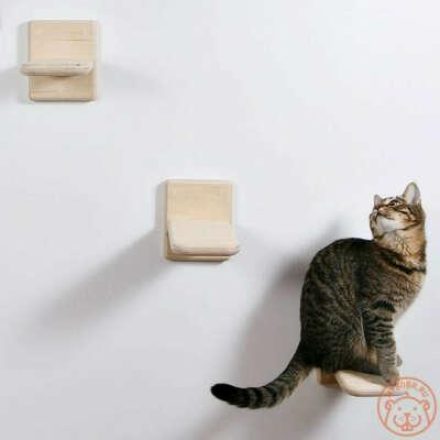 Ступеньки для кота на балкон