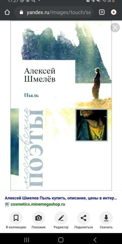 "Книга А.Шмелева ""Пыль"""