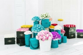 Цветы от Kompliment