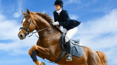 Верховая езда, конный спорт